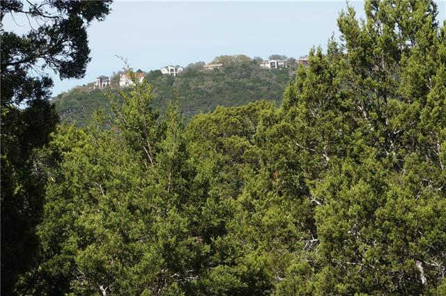 20708 Ridgeview Rd, Lago Vista, TX 78645 (#9876646) :: Forte Properties