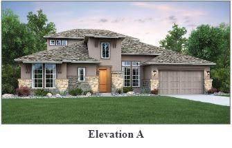 408 Cistern Way, Austin, TX 78737 (#9895221) :: Papasan Real Estate Team @ Keller Williams Realty