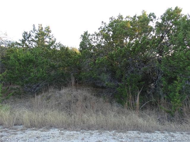 21513 Polk Cv, Lago Vista, TX 78645 (#9907370) :: Forte Properties