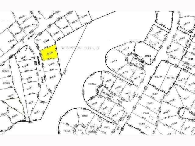 2907 Newark Cv, Lago Vista, TX 78645 (#9944161) :: All City Real Estate