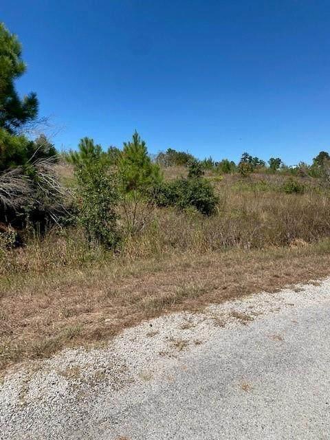 Lot 4 Village Forest Dr W, Smithville, TX 78957 (#9959224) :: Watters International