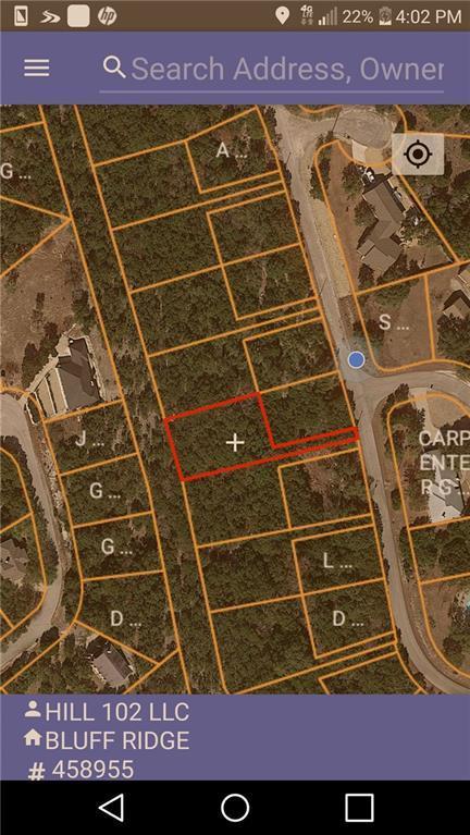 8648 Bluff Ridge Trl, Lago Vista, TX 78645 (#9995281) :: Magnolia Realty