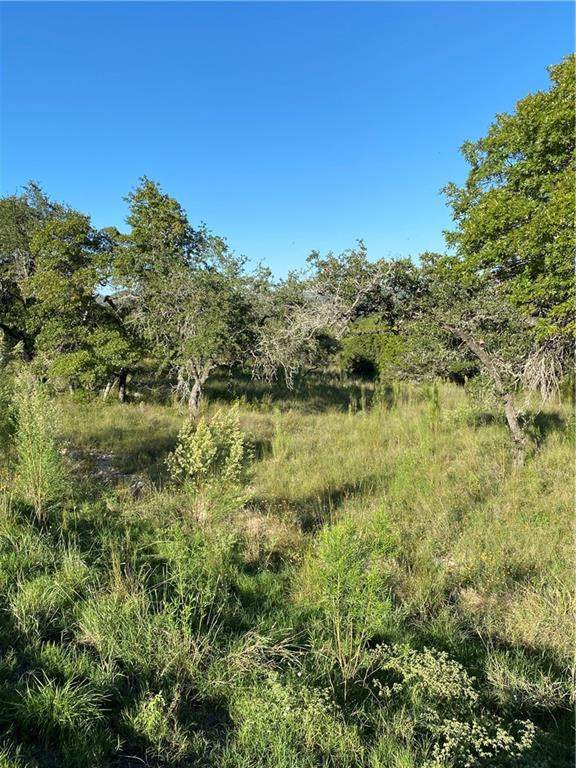 100 Billings Rd, Boerne, TX 78006 (MLS #1045241) :: Brautigan Realty