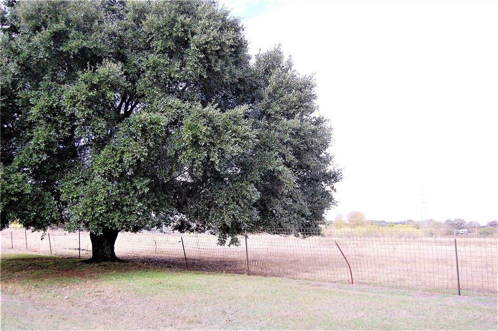 TBD Live Oak - Photo 1