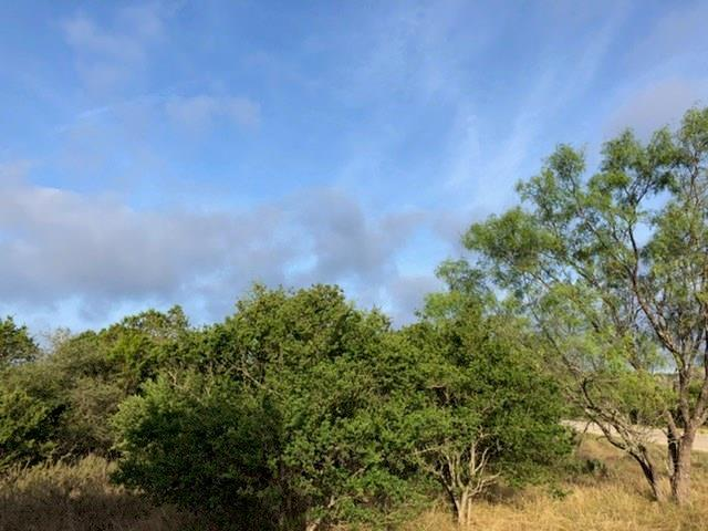 1700 Live Oak Canyon Lot 9, Dripping Springs, TX 78620 (#1605907) :: The Smith Team