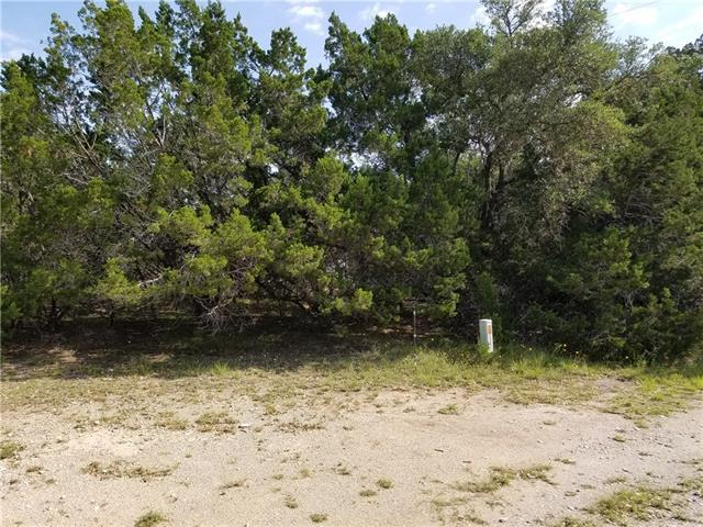 6704 Bar K Ranch Rd, Lago Vista, TX 78645 (#2267435) :: Forte Properties