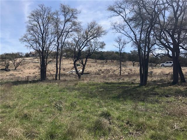 121 Taylor Creek Way, Liberty Hill, TX 78642 (#2547498) :: Forte Properties