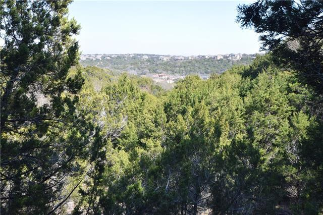 13714 Hunters Pass, Austin, TX 78734 (#2773493) :: Forte Properties