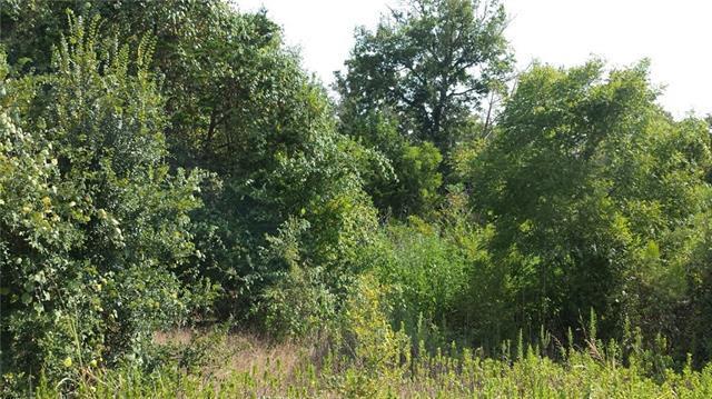 160 Arbor Hill Way, Cedar Creek, TX 78612 (#2857794) :: Forte Properties
