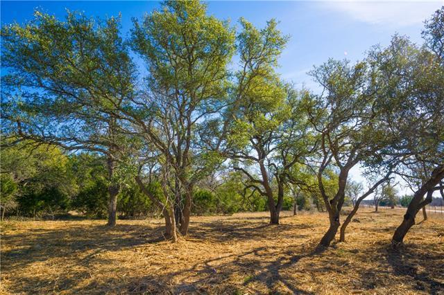 1200 Lightning Ranch Rd, Georgetown, TX 78628 (#3029481) :: Papasan Real Estate Team @ Keller Williams Realty