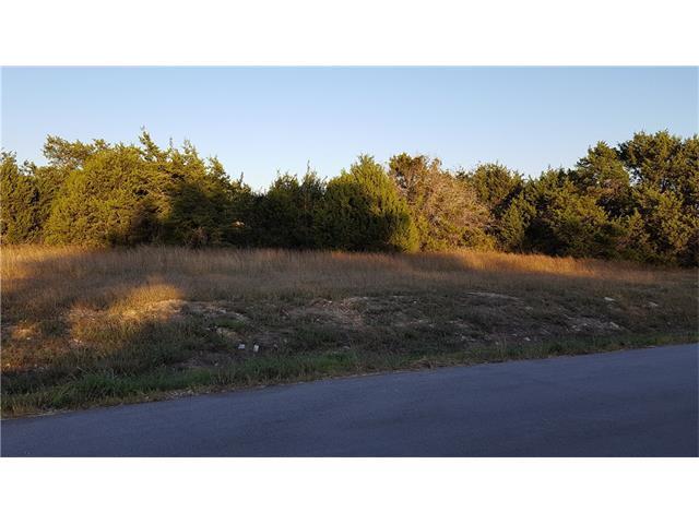 100 Ken Pelland Cv, Liberty Hill, TX 78642 (#3124067) :: Ana Luxury Homes