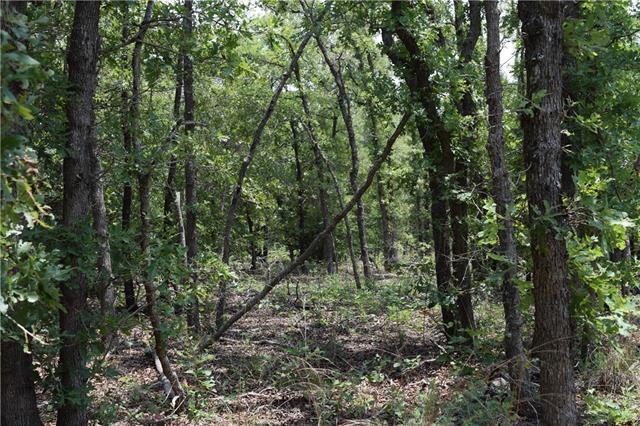 TBD Whipperwill Lot 3 Ln, Elgin, TX 78621 (#3335116) :: Forte Properties