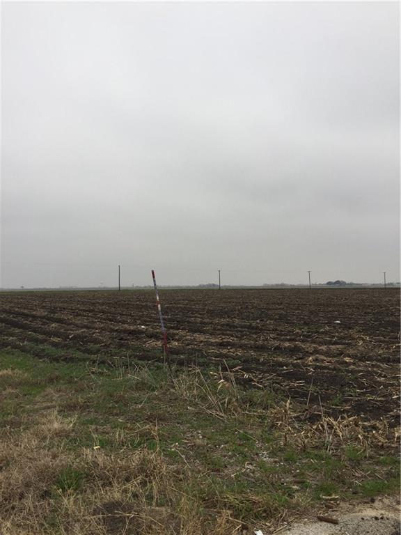 0000 Fm 1660, Hutto, TX 78634 (#4030185) :: Papasan Real Estate Team @ Keller Williams Realty