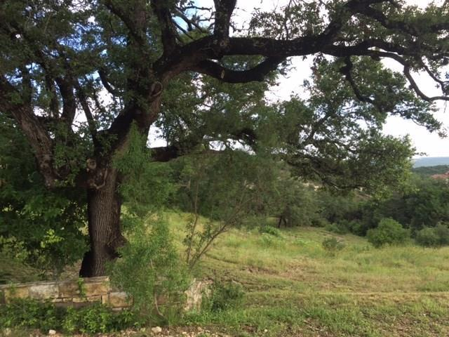 116 Brandon Way, Austin, TX 78733 (#5326601) :: The Perry Henderson Group at Berkshire Hathaway Texas Realty