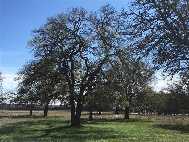 201 Oak Hill Dr, Liberty Hill, TX 78642 (#5570723) :: Forte Properties