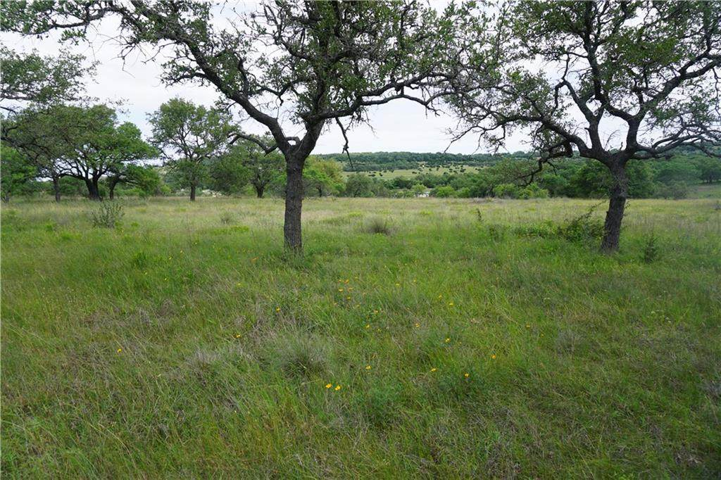 Lot 25 Longhorn Trail - Photo 1