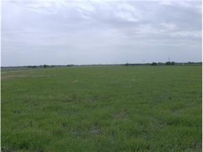 1315 County Rd 345, Granger, TX 76530 (#6077311) :: Papasan Real Estate Team @ Keller Williams Realty