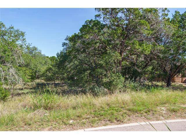 288 Tulley Ct, Wimberley, TX 78676 (#6297482) :: Forte Properties