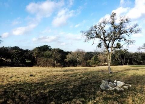 105 Birdstone Ln, Georgetown, TX 78628 (#6381606) :: The ZinaSells Group