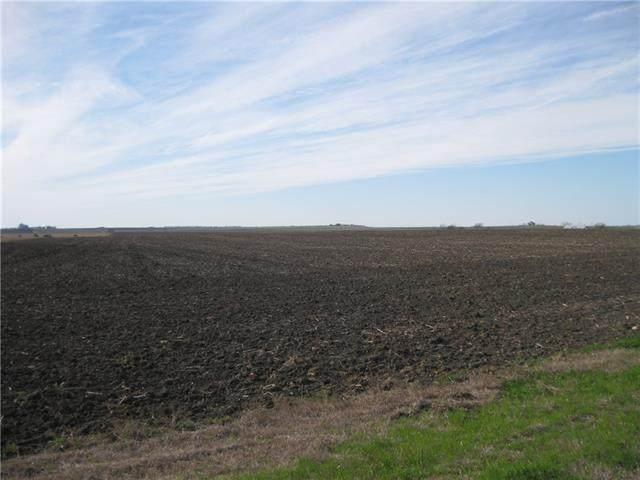 100 Allan Ln, Coupland, TX 78615 (#6396474) :: Front Real Estate Co.