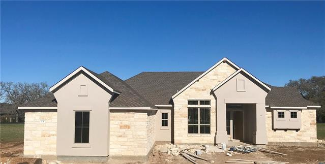 131 Dally Ct, Dripping Springs, TX 78620 (#6915290) :: The ZinaSells Group