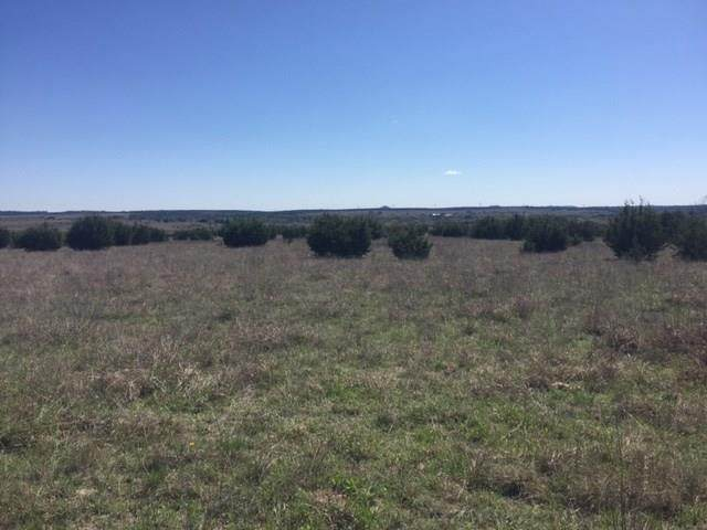 Tract 1 County Road 2275 - Photo 1