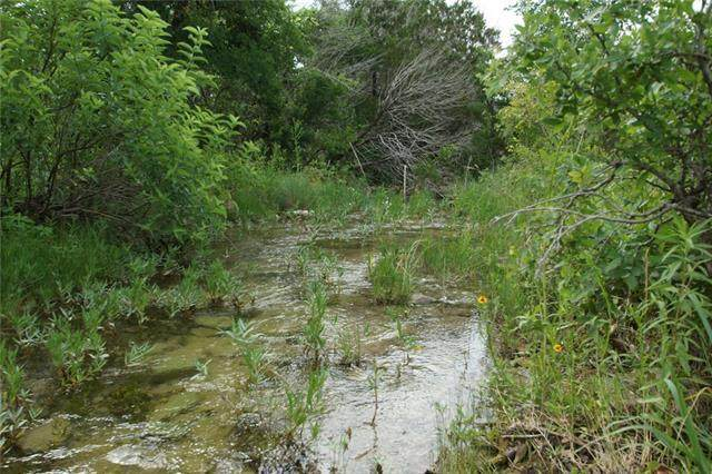 Tract 3B County Road 236 - Photo 1