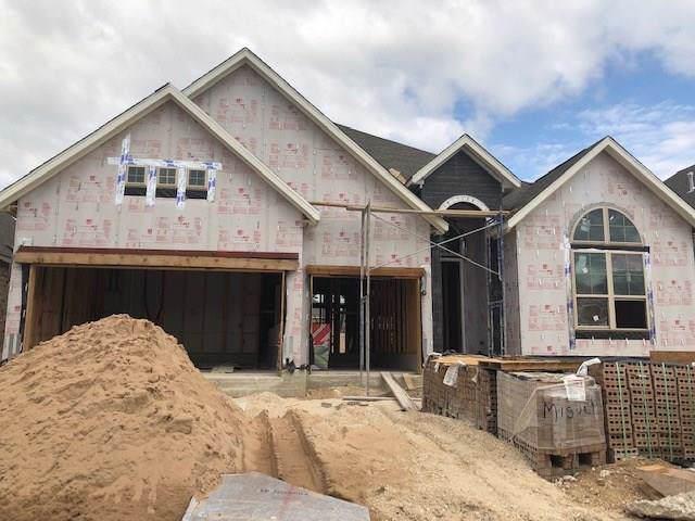 725 Woodview Dr, Leander, TX 78641 (#7115581) :: Ana Luxury Homes