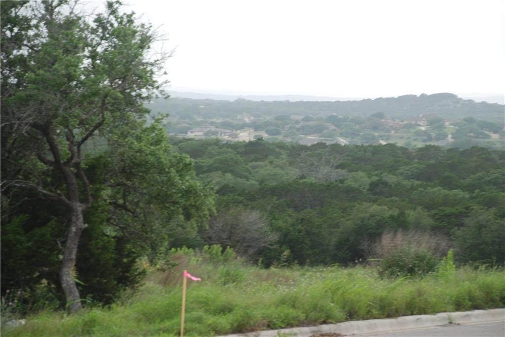 2730 Highway 290 - Photo 1