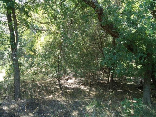4712 Country Club Dr, Lago Vista, TX 78645 (#7966733) :: Forte Properties