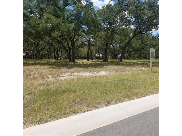 173 Waters Edge Cv, Dripping Springs, TX 78620 (#7989481) :: Forte Properties