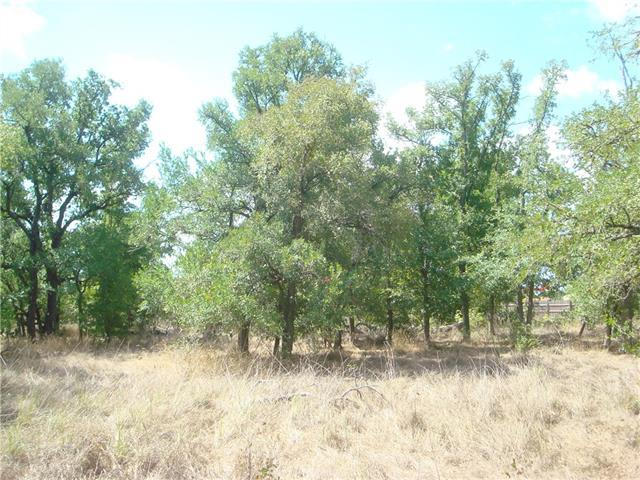 145 Lot D Martin Crossing, Cedar Creek, TX 78612 (#7992999) :: Forte Properties