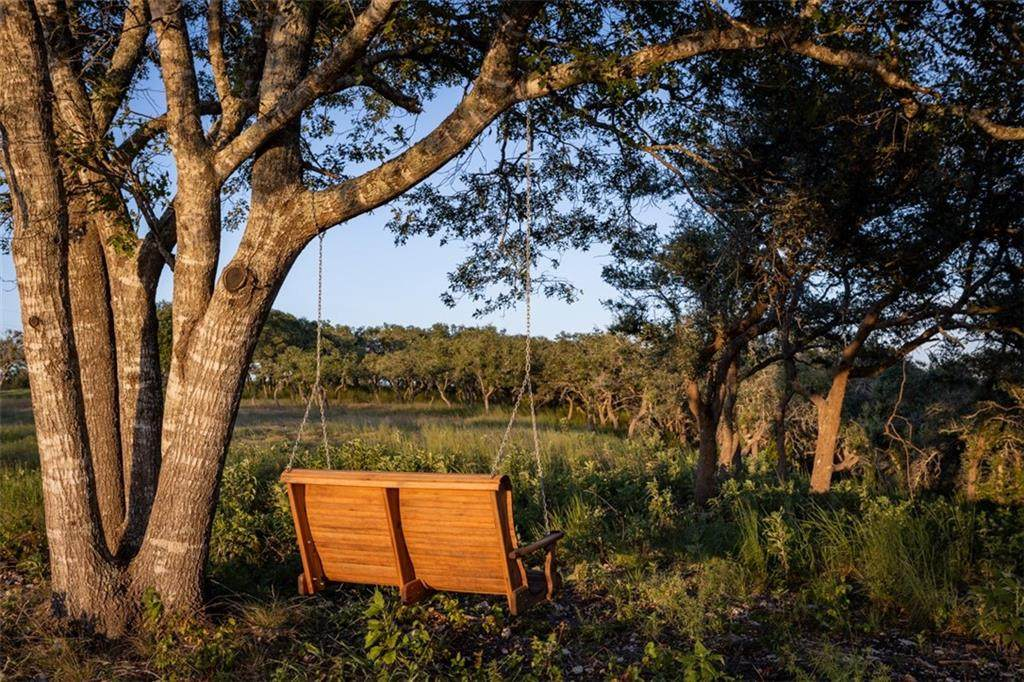 24 Twisted Oak Trl - Photo 1