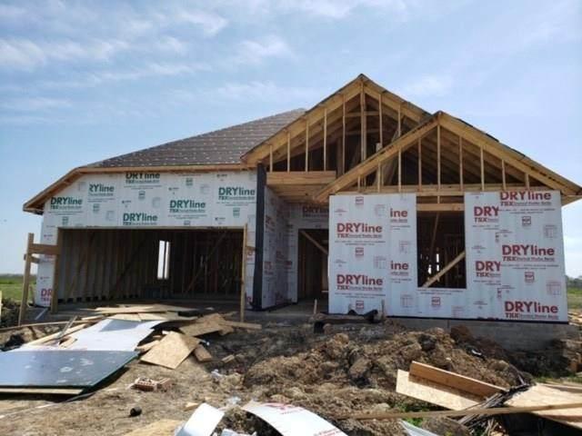 205 Treasure Trove Path, Kyle, TX 78640 (#8215523) :: Papasan Real Estate Team @ Keller Williams Realty