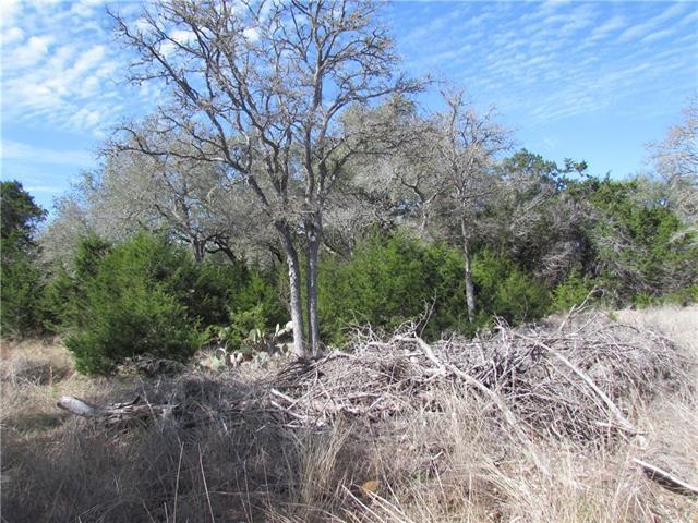 37 Serenade Cir, Wimberley, TX 78676 (#8620500) :: Forte Properties