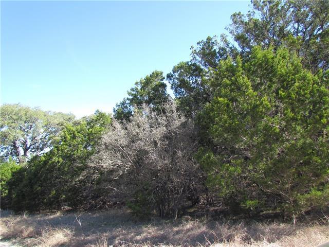 47 Serenade Cir, Wimberley, TX 78676 (#8904260) :: Forte Properties