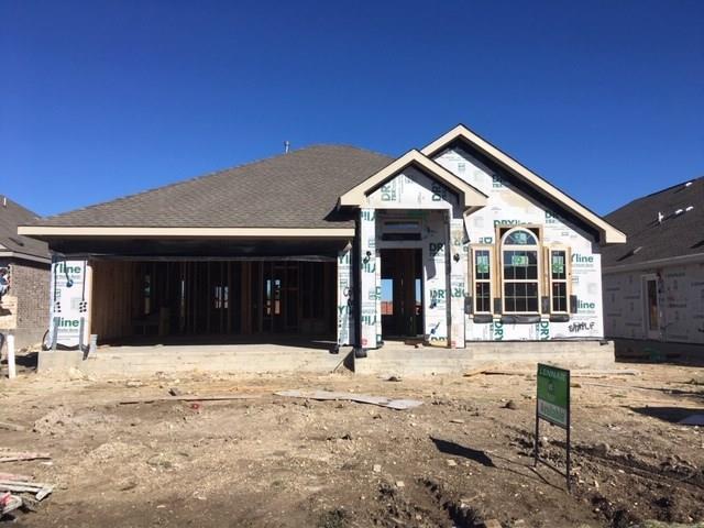 1250 Chad Dr, Round Rock, TX 78665 (#9056151) :: Ana Luxury Homes