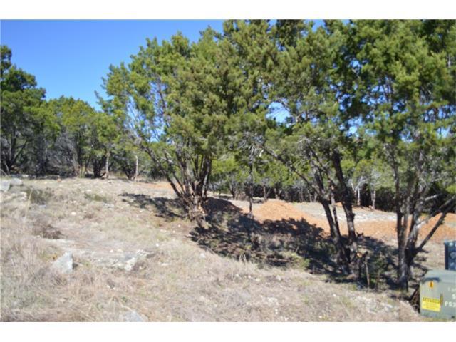3204 Burnside Cir, Lago Vista, TX 78645 (#9299061) :: Forte Properties