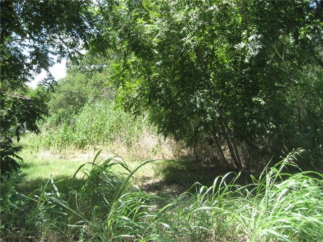 1111 Braden St, Lockhart, TX 78644 (#9330034) :: Forte Properties