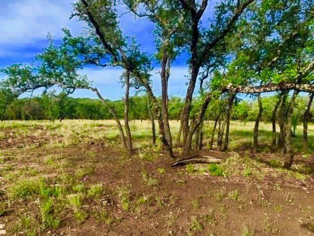 22501 Hazy Hollow Cv, Spicewood, TX 78669 (#9450334) :: Watters International