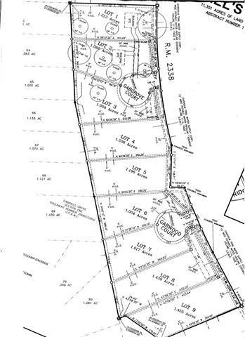 100 Gabcove, Georgetown, TX 78633 (#9569894) :: Forte Properties