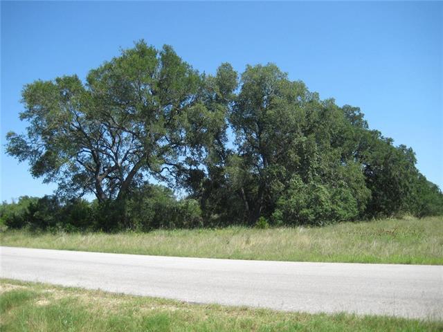 1061 Provence Pl, New Braunfels, TX 78132 (#9619300) :: Zina & Co. Real Estate