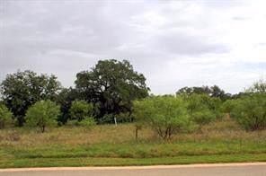 117 Pink Mimosa, Horseshoe Bay, TX 78657 (#1310576) :: RE/MAX Capital City