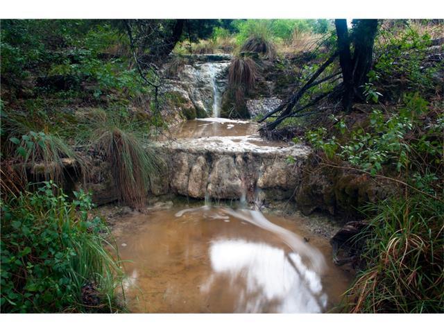 8130 Lime Creek Rd, Leander, TX 78641 (#1842908) :: Forte Properties