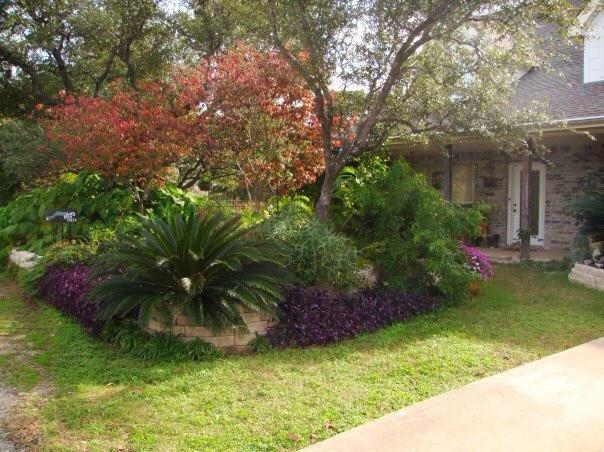 15605 Rock Crk, Austin, TX 78734 (#3624908) :: Forte Properties
