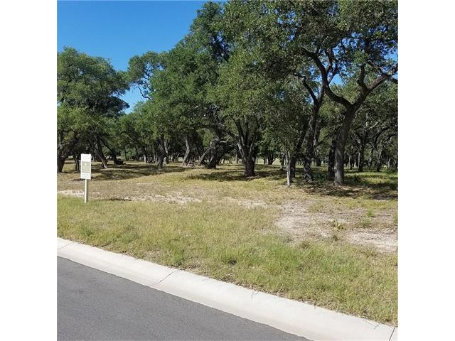 205 Waters Edge Cv, Dripping Springs, TX 78620 (#5987768) :: The ZinaSells Group