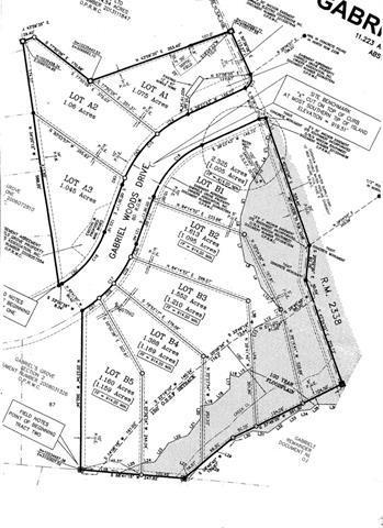 100 Gabriel Woods Dr, Georgetown, TX 78633 (#6141690) :: Forte Properties