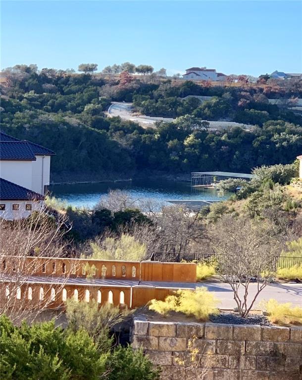 204 Tumbling Stream Cove, Lakeway, TX 78734 (#8630194) :: Ana Luxury Homes