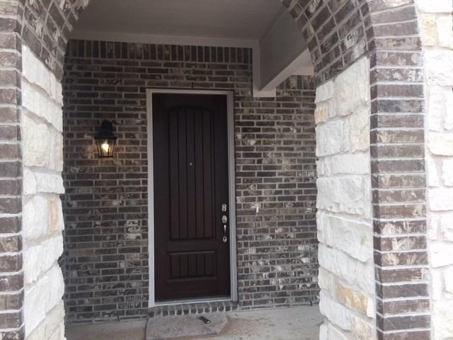 19108 Hershey Pass, Pflugerville, TX 78660 (#5120351) :: Forte Properties
