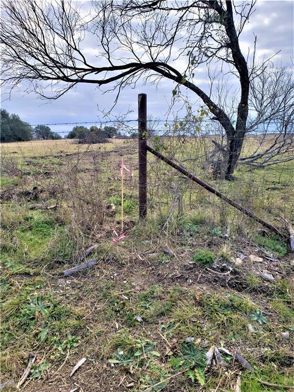 2427 County Road 219, Florence, TX 76527 (#1175707) :: Papasan Real Estate Team @ Keller Williams Realty